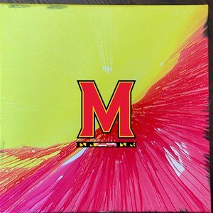 Other - Maryland Football Inspired Painting